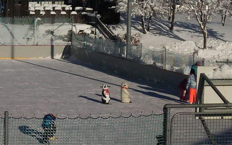 WiAFa_Eislaufen